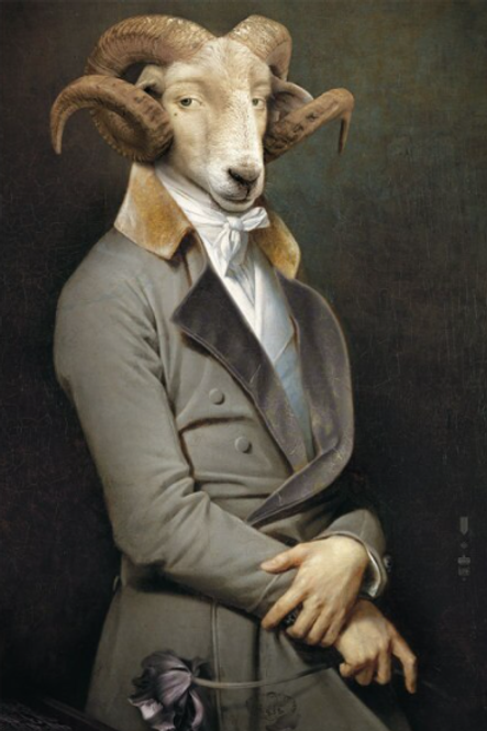 Canvas Wall Art Picture - Sheep