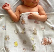 Bébé-Choux-Swaddle-@samantha.joy__.jpg