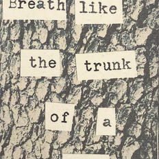 breath like the trunk of a tree