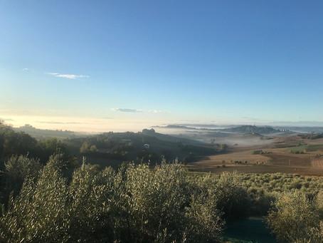 Nebelschwaden über Alfiano Natta