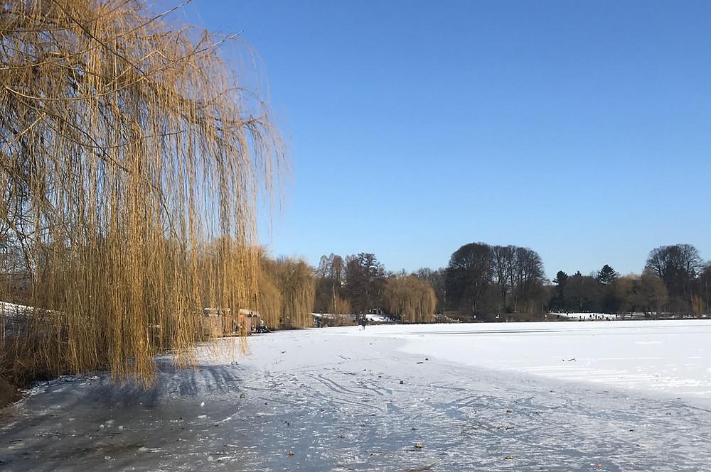 Corona Stadtpark Hamburg See Eis