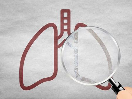 [알기쉬운 건강 톡톡톡]폐(肺)의 병기(病機)에 대하여