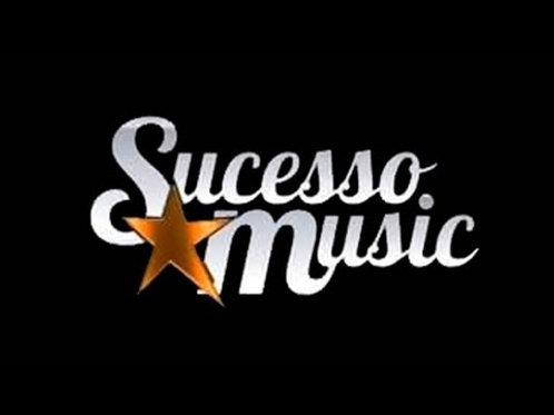 As Melhores Da Sucesso Music