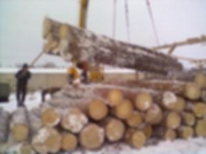 купить дрова Калуга,купить дрова Воробьи,купить дрова Детчино,дрова Малоярославец,дрова Малоярославецкий район,купить дрова Малоярославец,купить дрова Обнинск,купить дрова Жуков,дрова Суходрев,дрова Тихонова Пустынь,дрова Муратовка,дрова Ерденево,дрова Жуков,дрова Жуковский район,дрова Наро-Фоминск,дрова Наро-Фоминский район,дрова Боровск,дрова Боровский район,дрова Балабаново,дрова Ворсино,дрова Башкино,дрова Подольск,дрова Подольский район,дрова Вороново,дрова Шишкин Лес,дрова Апрелевка,дрова Первомайское,дрова Крёкшино,дрова Селятино,дрова Рассудово,дрова Одинцовский район,дрова Ленинский район,дрова Троицк,дрова Верея,дрова Кубинка,дрова Дорохово,дрова Воротынск,дрова Сухиничи,купить дрова Калужская область,купить дрова Новая Москва,купить дрова Малоярославецкий район,дрова Перемышлский район,дрова Бабынинский район,дрова Суворовский район,дрова Тарусский район,дрова Медынский район, дрова Чехов,дрова Чеховский район,дрова Серпуховской район,купить дрова Детчино,дрова Воротынск,дро