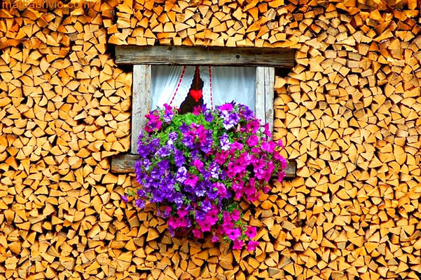 купить дрова в москве,купить дрова в москве с доставкой,купить берёзовые дрова в москве,купить берёзовые дрова в москве с доставкой,купить дрова в московской области,купить дрова с доставкой в московской области,купить сухие дрова в москве,купить сухие дрова в москве цена,купить сухие дрова в москве стоимость,цена куба дров в москве,стоимость куба дров в москве,стоимость куба дров в московской области,цена куба дров в московской области,куб дров в москве стоимость,куб дров в московской области стоимость,дрова в москве купить цена,купить дрова в московской области цена,купить дрова в московской области стоимость,купить дубовые дрова в москве,купить дубовые дрова в московской области,купить ольховые дрова в москве,купить ольховые дрова в московской области,купить осиновые дрова в москве,купить осиновые дрова в московской области,цена колотых берёзовых дров с доставкой в москве,стоимость колотых берёзовых дров с доставкой в московской области,купить с доставкой дрова в москве,купить дрова