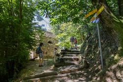 Locarno Monti Contra - Sentiero Collina