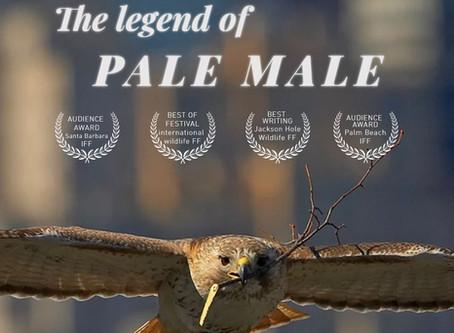 La légende de Pale Male (Film)