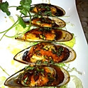 Grilled Mussels (6)