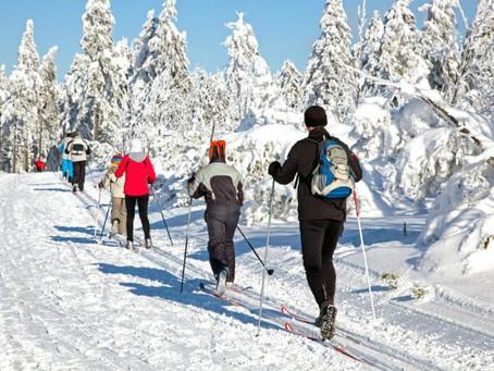 Drummond Island Resort featured in WMTA Snow Article