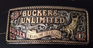 box buckles, trophy buckle, trophy silver, bull riding award