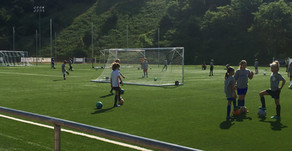 Full Day Summer Camp-Session I Underway at Oakwood Park
