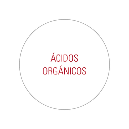ÁCIDOS ORGÁNICOS.png