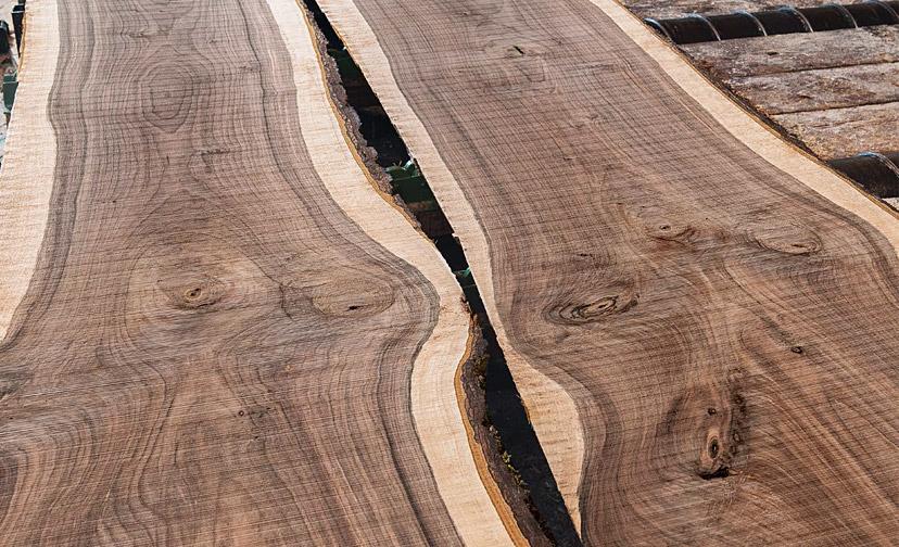 Wood stem