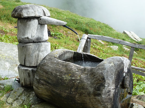 Ancient solid wooden trough Switzerland