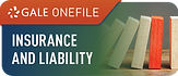 Gale OneFile_Insurance and Liability.png