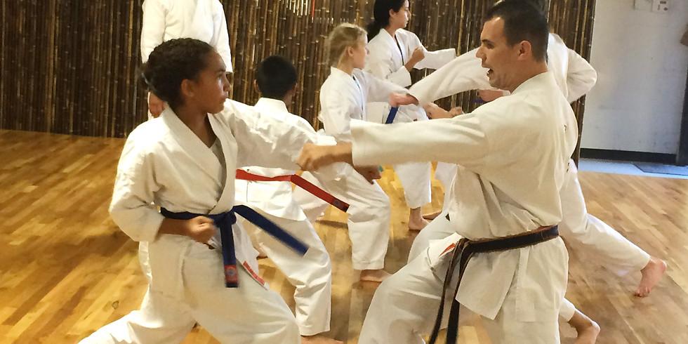 Jinsendo Shugyo Taikai Tournament - Kyu Levels