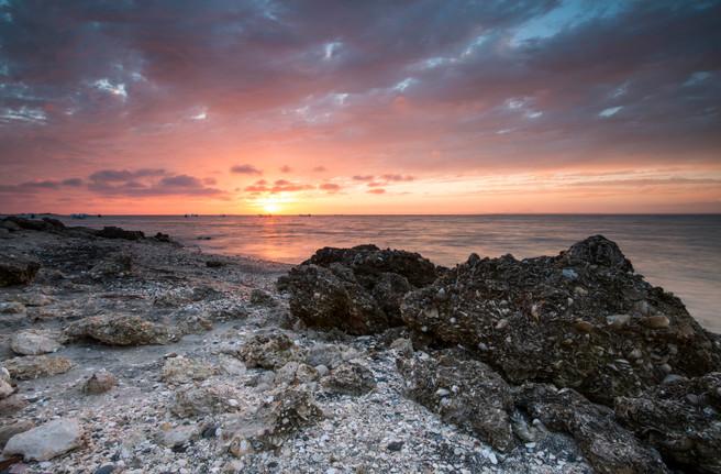 San Ignacio Lagoon sunset.jpg