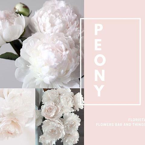 #florista.jpg