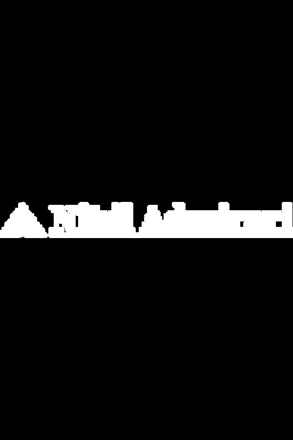 Nihil Admirari 8Bit Logo.png