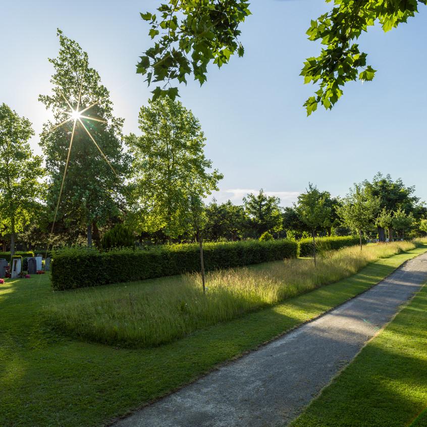Bremgartenfriedhof©remoeisner-0001833