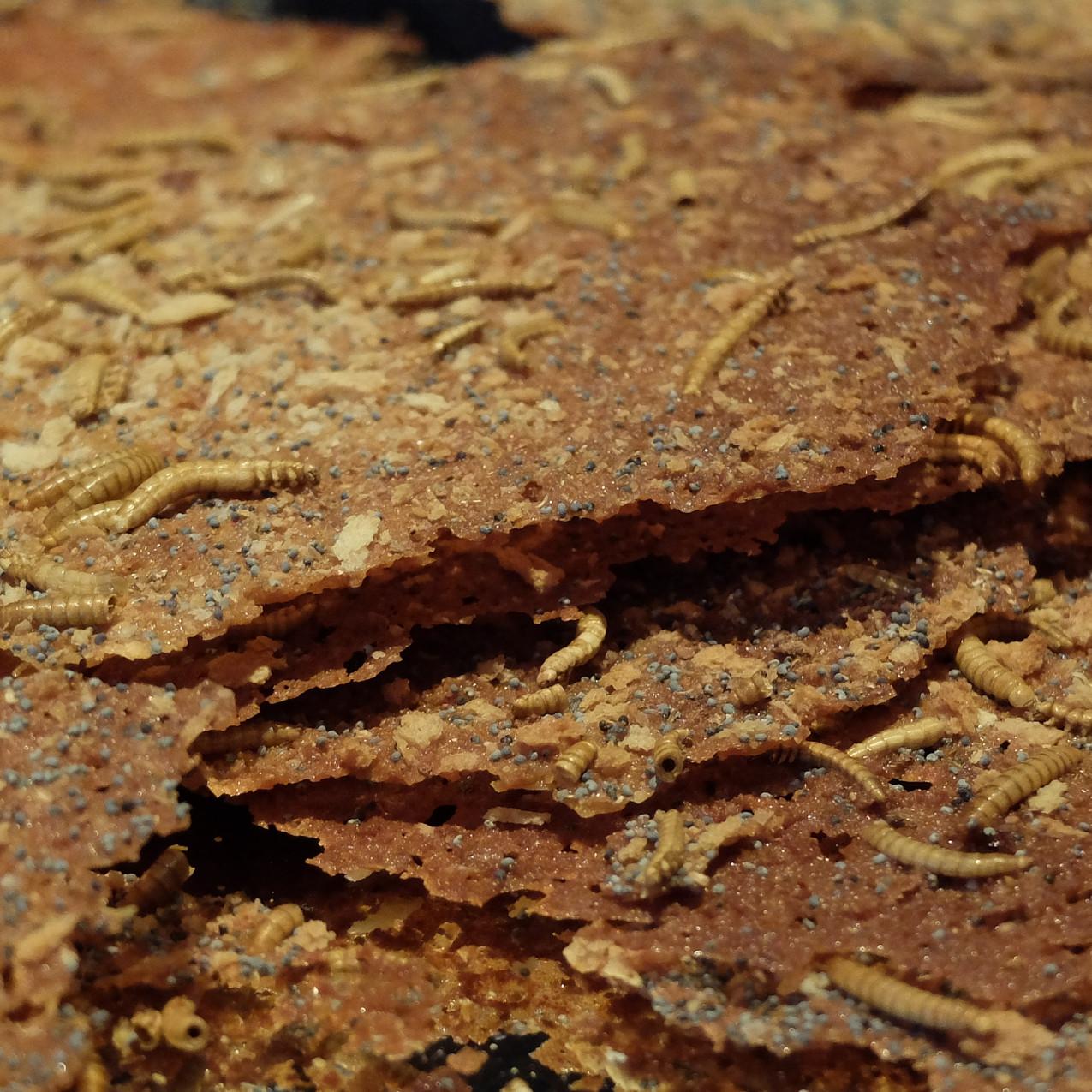 Honigsüsse Delikatesse aus der Larve