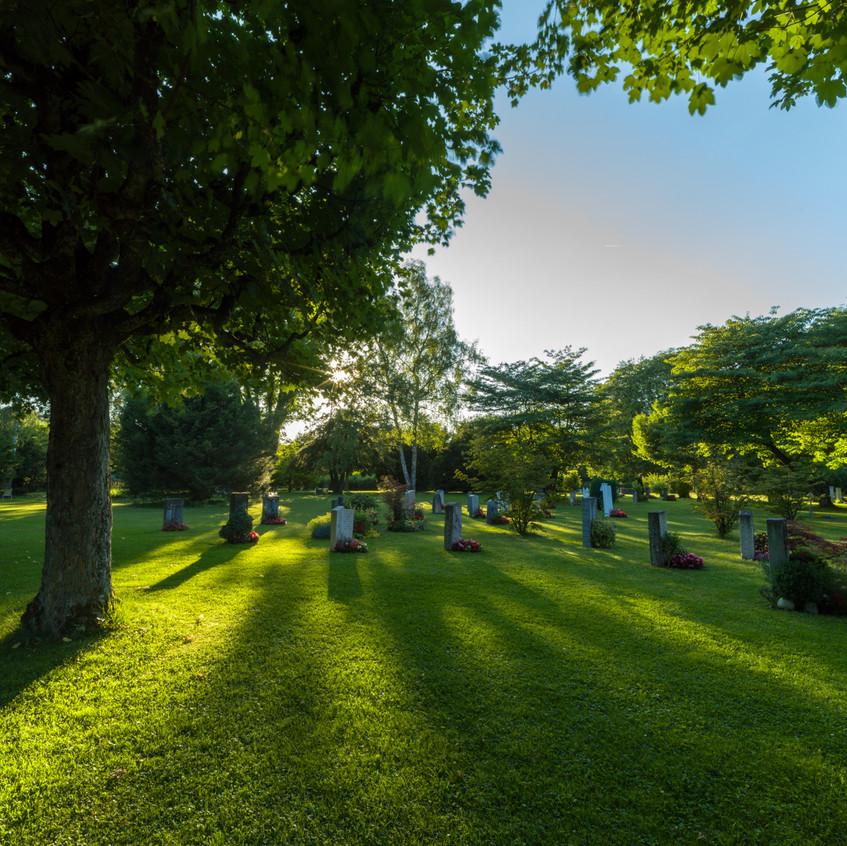 Bremgartenfriedhof©remoeisner-0001901