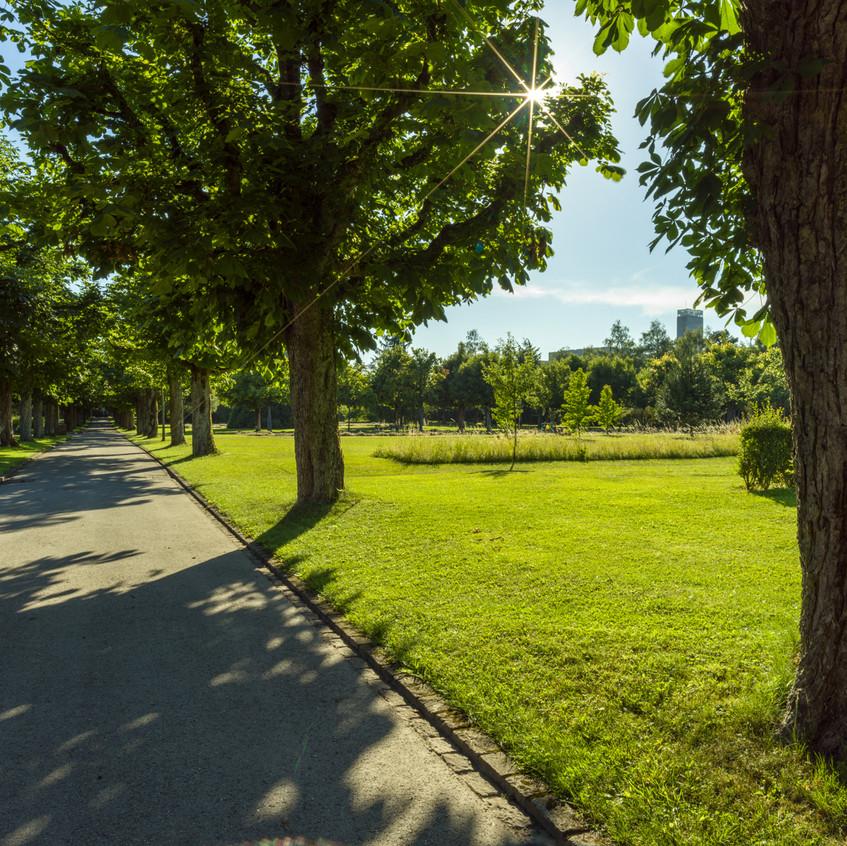 Bremgartenfriedhof©remoeisner-0001781