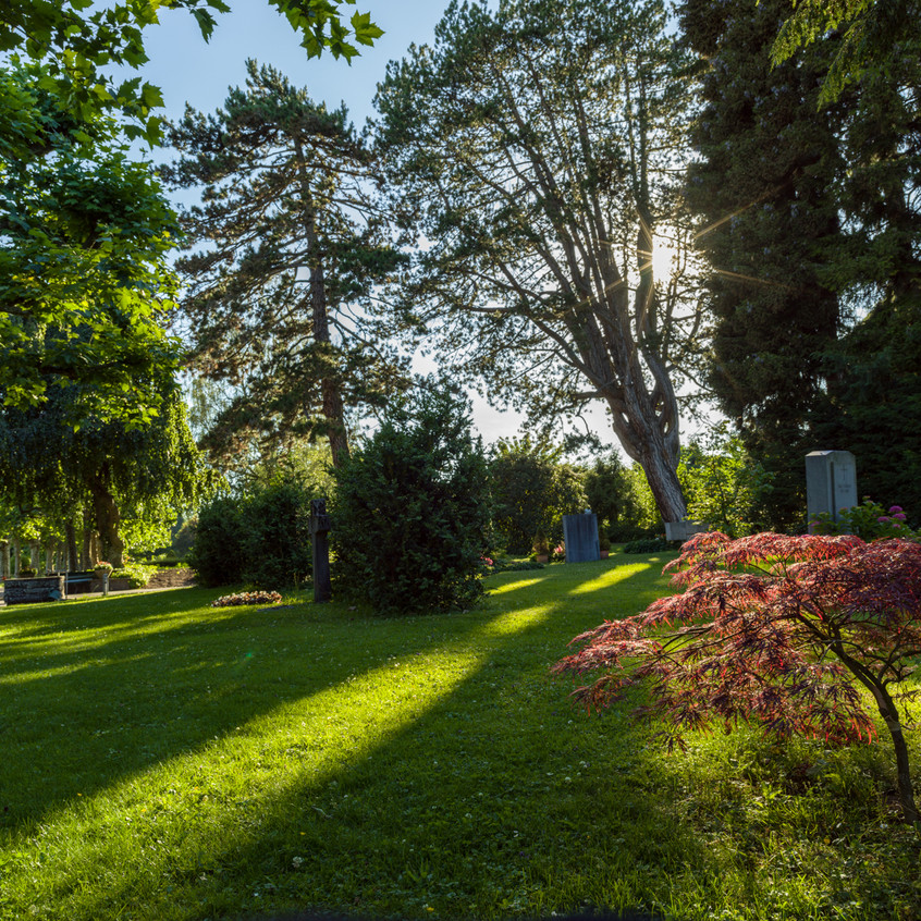 Bremgartenfriedhof©remoeisner-0001821