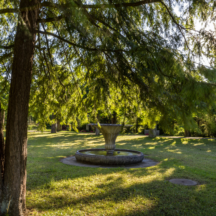 Bremgartenfriedhof©remoeisner-0001808