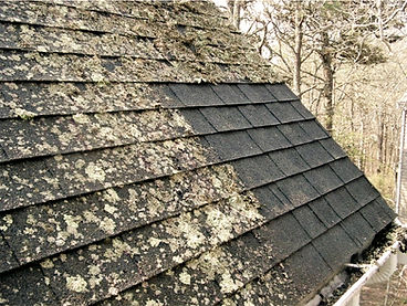 SOFT ROOF CLEANING