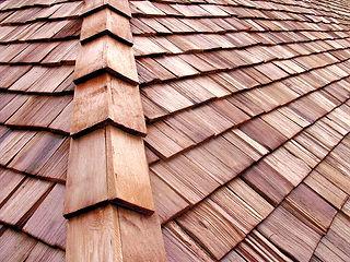 Nardone Painting Roof Care