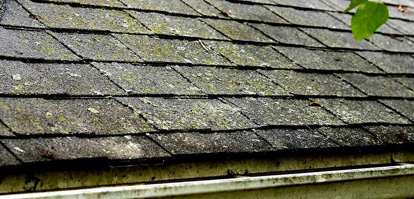 Soft Roof Washing