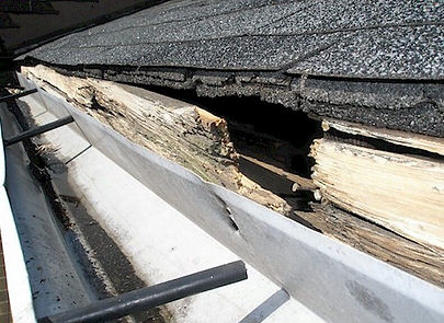Gutter System Cleaning - Nardone Painting
