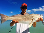 Capt.Casey, Sarasota Saltwater Adventures, Redfish, inshore, fishing, charter, guide, srq, 941