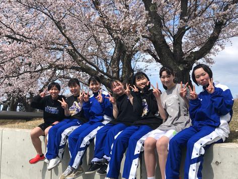 小松大谷高校お花見の会