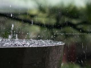 Autumn rain〜秋雨