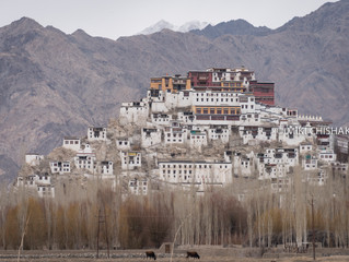 Thikse Gompa