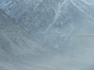 Magnificent natural landscape in Ladakh