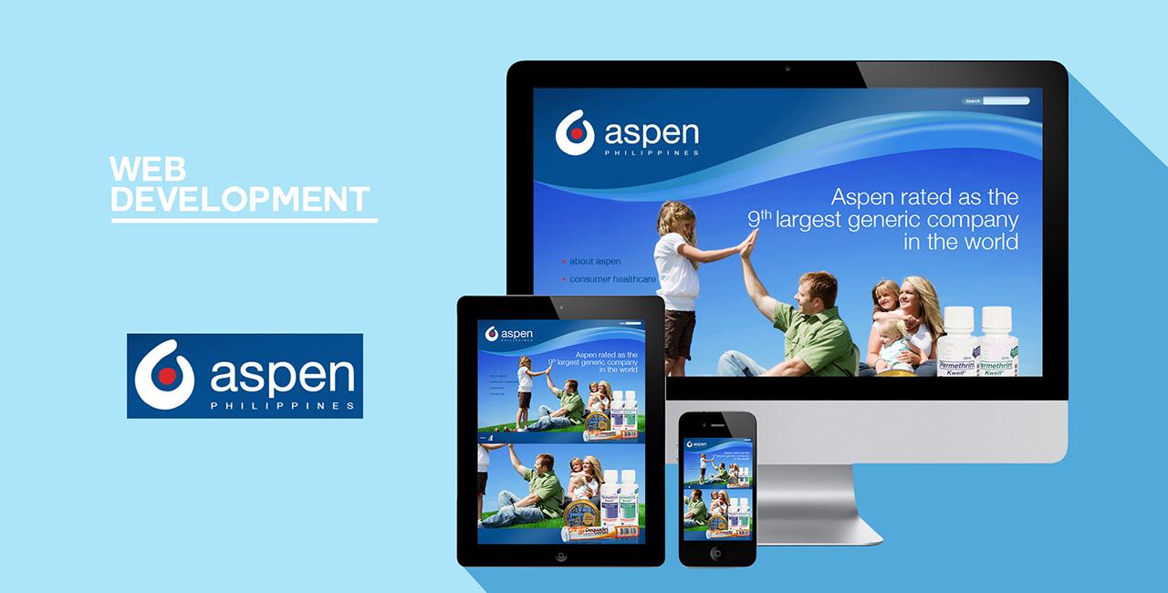 website mockup aspen