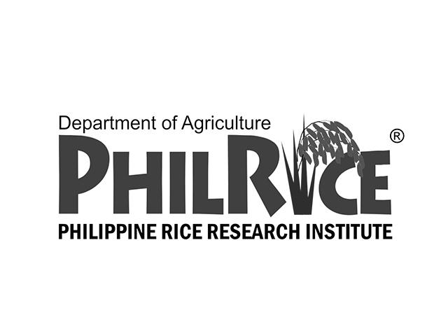 phil rice