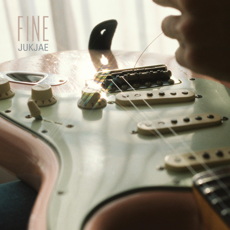 [적재] Fine