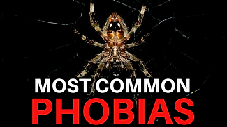 phobias copy (1).png