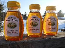 8 oz. Raw Clover Honey
