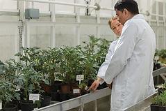 Plant_Growth_Promotion5-e1469703377264.j
