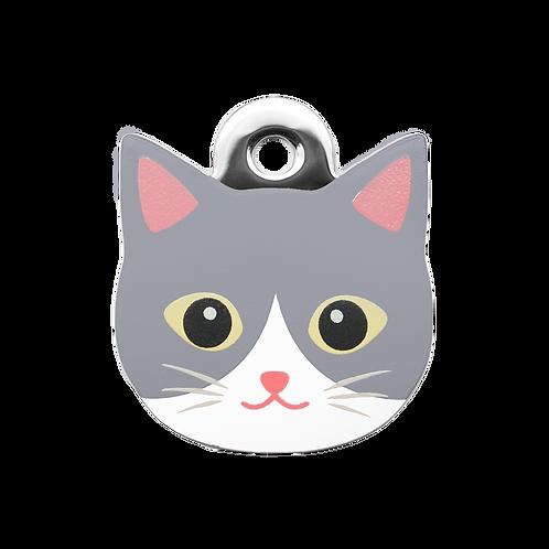 Grey Tuxedo Cat