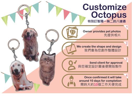 Customize Octopus