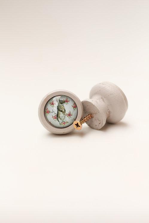 Doorknob Rabbit rose