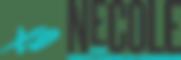 xoNecole Logo.png