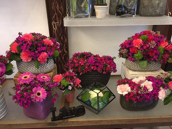 Sidour bouquet avec vase