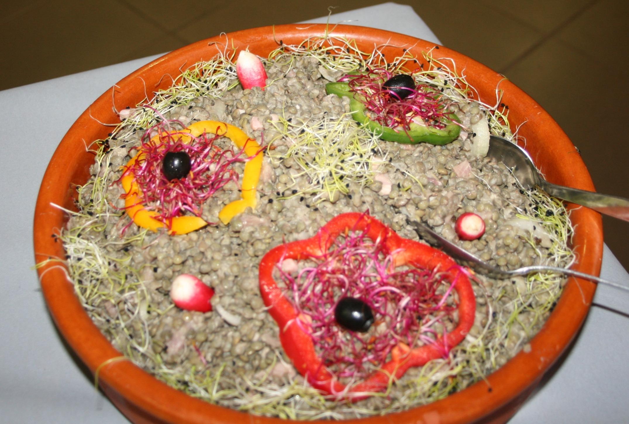 Salade de Lentilles avec jambon cru